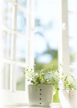 Gondoskodj arról, hogy mindig friss levegő legyen otthonodban.