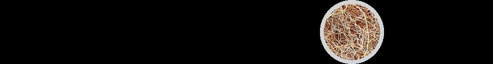 Piktogram 1