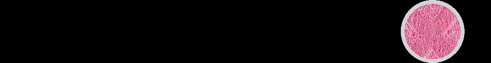 Piktogram 2